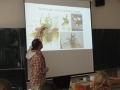 Chov tropických brouků3