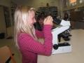 mikroskopování11