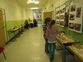 Výstava hub 16
