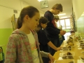 Výstava hub 2